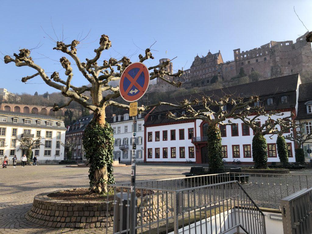 Auf den Spuren des Heidelbär - Mit dem Wohnmobil nach Heidelberg 13