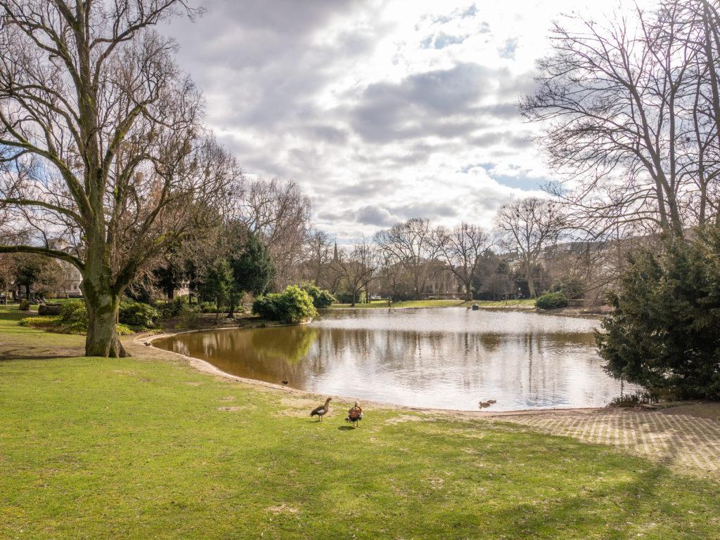 Park Wiesbaden