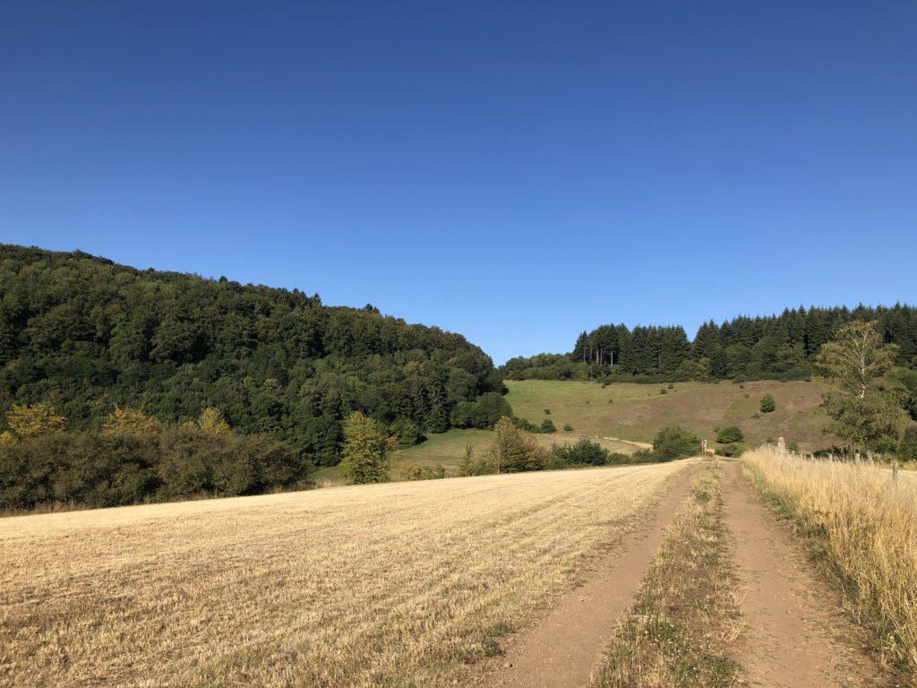 Eifel Wohnmobil